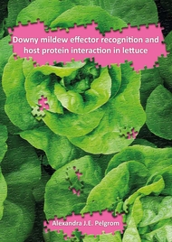 Downy mildew effector recognition and host protein interaction in lettuce