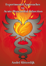 Experimental Approaches to Acute Myocardial Infarction