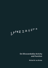 Sprezzatura On Olivocerebellar Activity and Function
