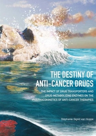 The destiny of anti-cancer drugs