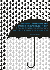 Antenatal depression and offspring neurodevelopment