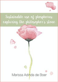 Sustainable use of phosphorus: