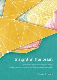 Insight in the brain