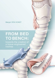 From bed to bench: towards the creation of a tissue-engineered trachea