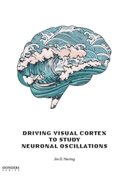 Driving visual cortex to understand neuronal oscillations